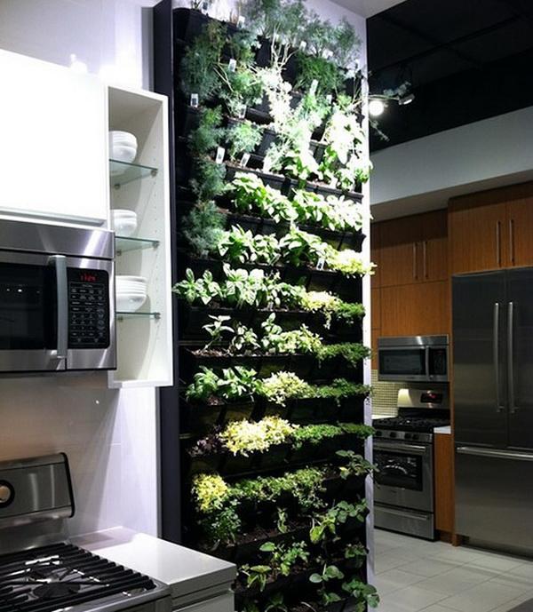 Дом мечты: Вертикальный сад трав на вашей кухне